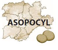 ASOPOCYL